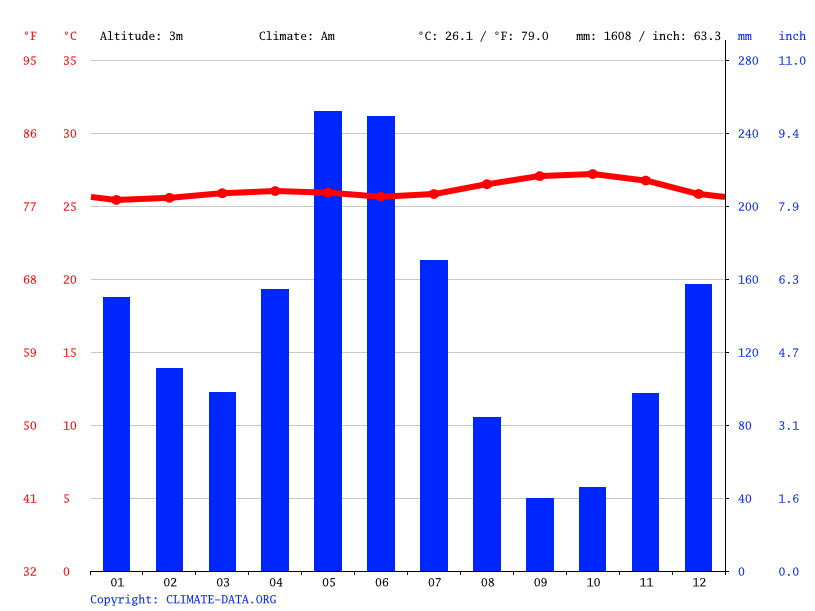 Climate graph // Weather by Month, Nieuw-Amsterdam