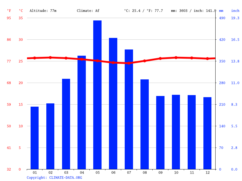 Climate graph // Weather by Month, San Carlos de Río Negro