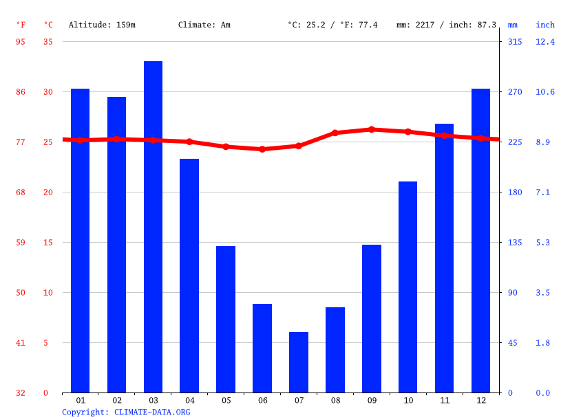 Climate graph // Weather by Month, Feijó