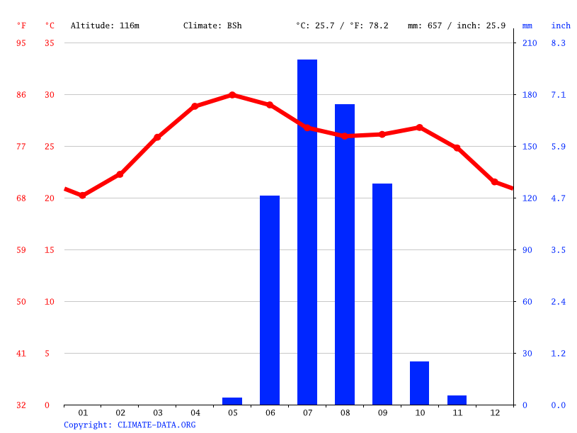 Climate graph // Weather by Month, Junagadh