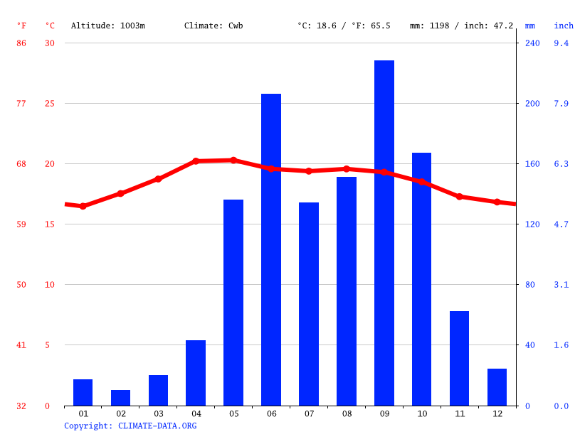 Climate graph // Weather by Month, San Jeronimo