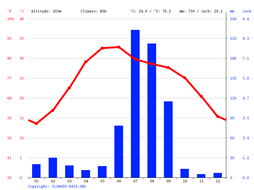 Climate graph // Weather by Month, Dankaur