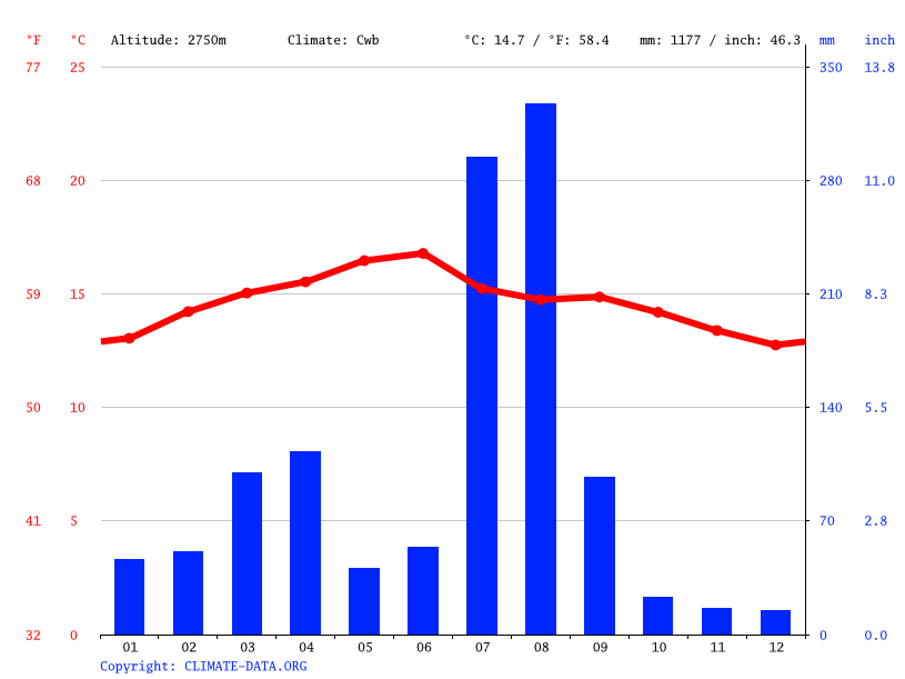 Climate graph // Weather by Month, Ankobar